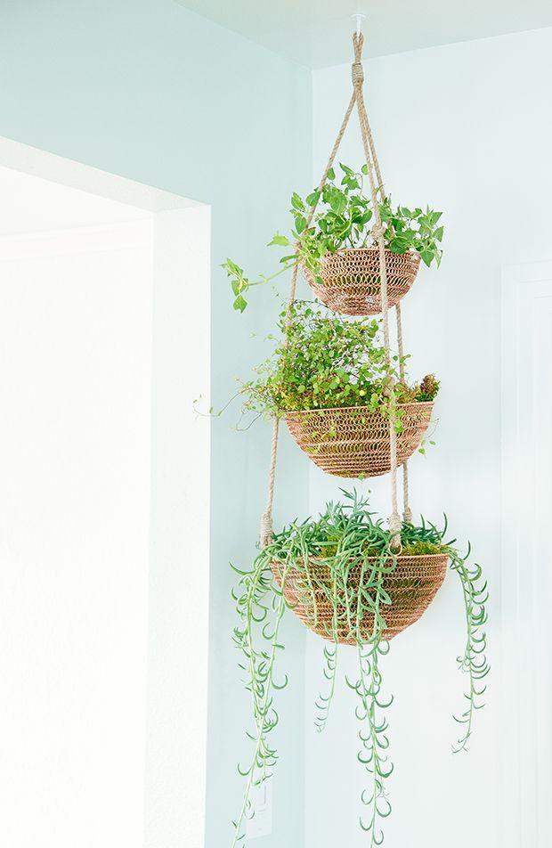 569 best images about plants indoor hanging diy pots on pinterest macrame plant pots. Black Bedroom Furniture Sets. Home Design Ideas