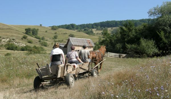 agritourism for tourists who love villages, traditions and natural life