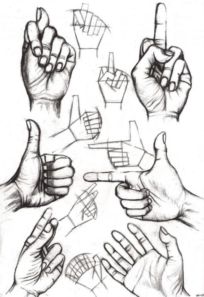 hands drawing                                                                                                                                                                                 Más