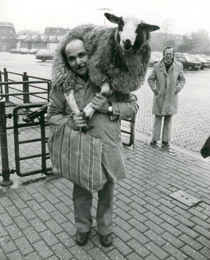 Hollanda'da kurban bayramı sabahı (1979-Rotterdam)