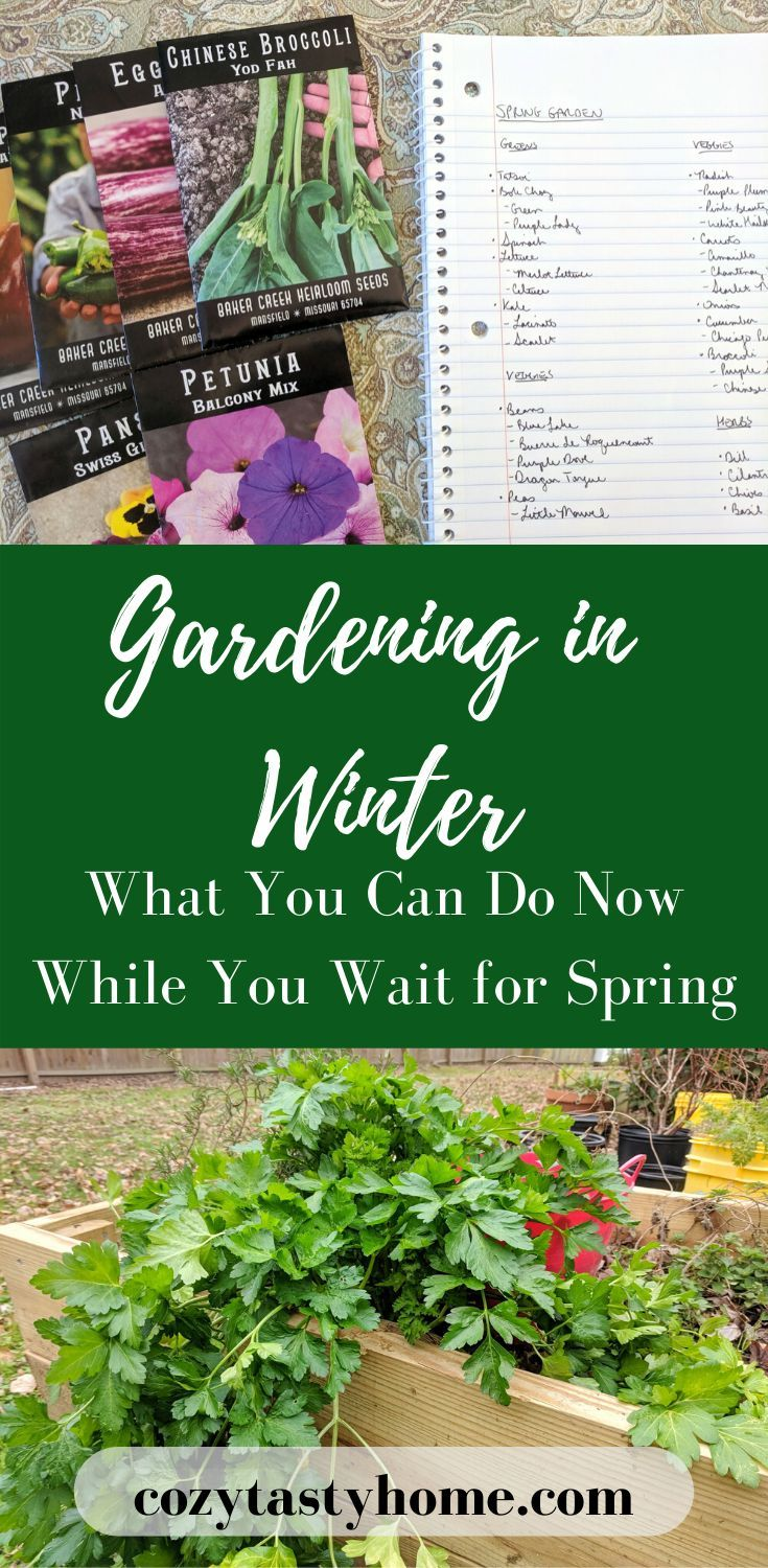 086b93fdf172dae367951133019151d4 - What Can Gardeners Do In Winter