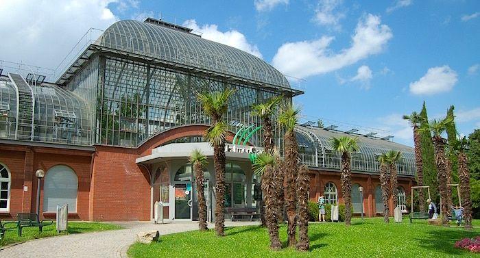 Palmengarten Frankfurt Gutschein Palmengarten Gutschein 2 Fur 1 Coupon Gutscheincode Rabatt Pdf Download Palmengarten Frankfurt Palmengarten Freizeitpark