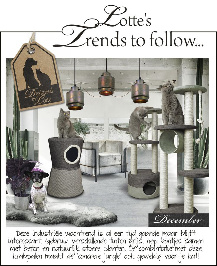 Trends to follow! Designed by Lotte