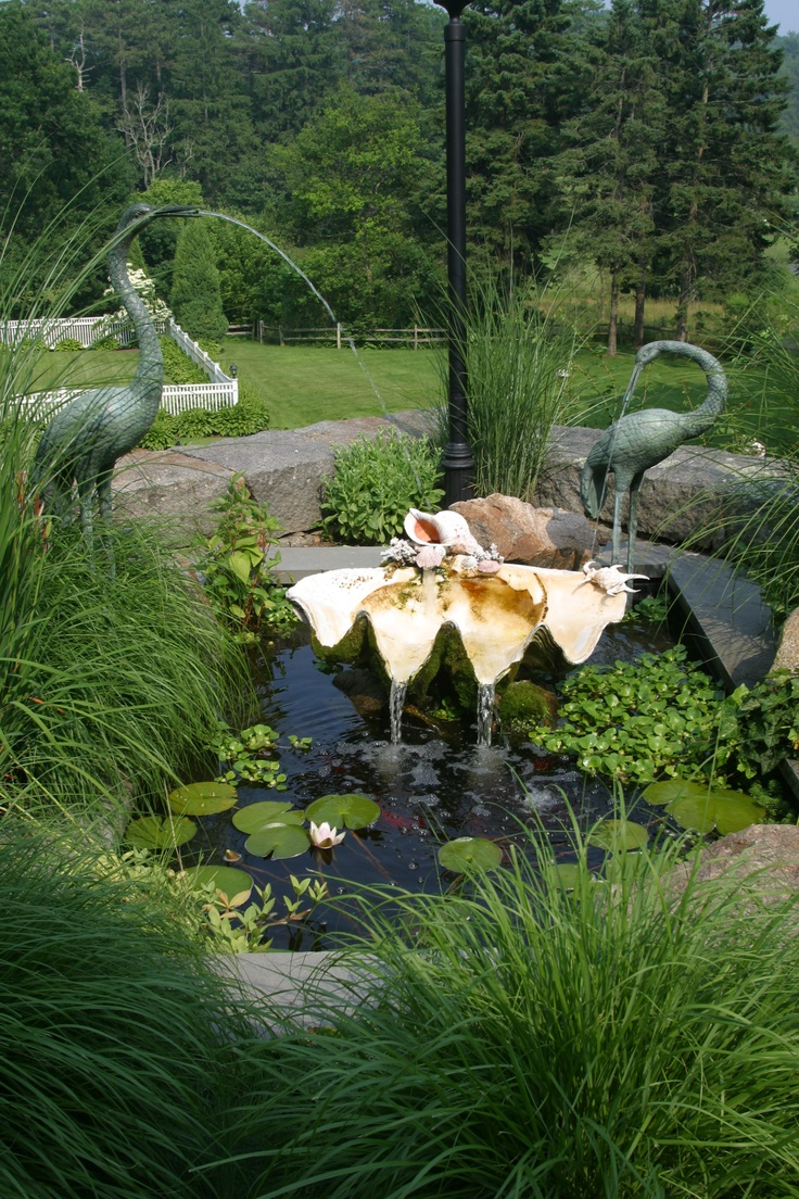 koi pond designed around customers giant clam shell www