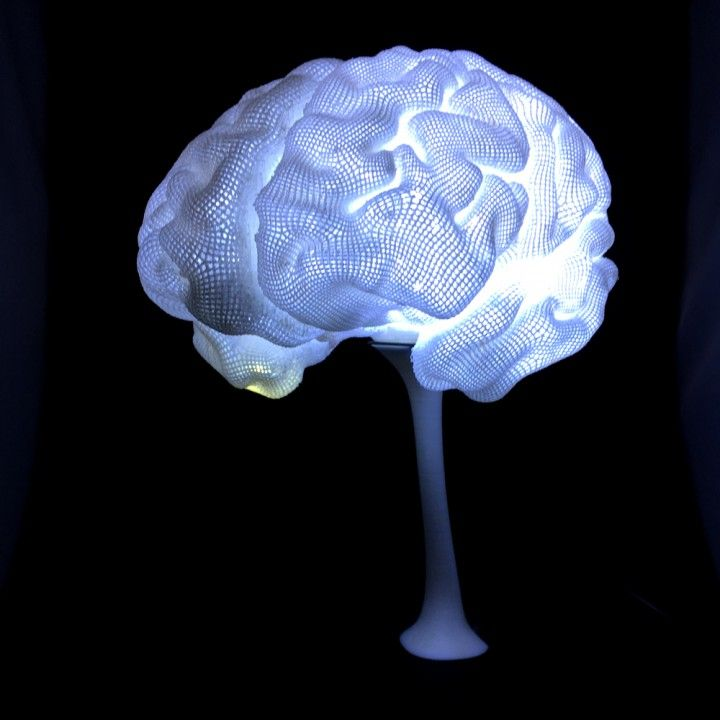 3d Printable Radiant Brain From Mri By Create Cafe 3d Printing Solutions And Education 3d Printing Prints Printing Solution