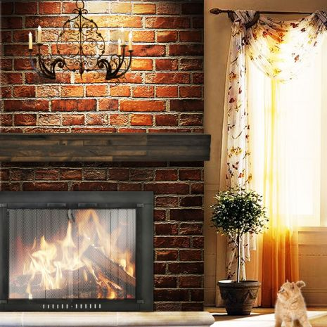 30 Best Best Selling Fireplace Doors Images On Pinterest Fireplace