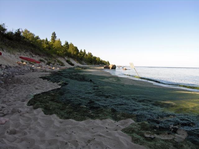 "livinglakes.ca : ""Lake Winnipeg named world's most threatened lake this year   A provincial distinction, a national black-eye"""