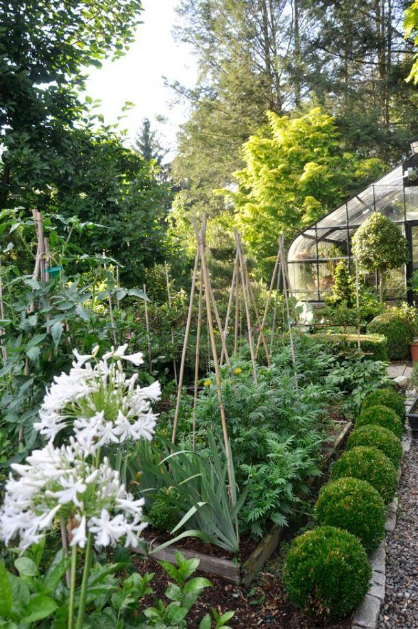 215 best images about jardin de cur potager en carr for Jardin potager en anglais
