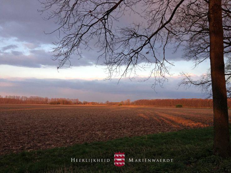 Neergaande zon op de akkers van landgoed Mariënwaerdt in maart www.marienwaerdt.nl
