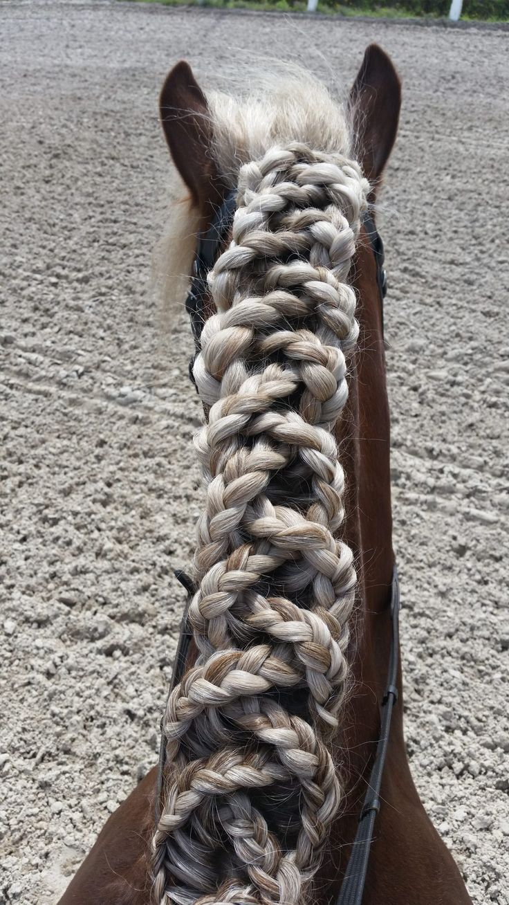 What an incredible braid! Really tallented. #Jupinkle