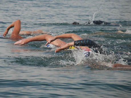 Open Water Swim Technique: Work Less, Swim Faster