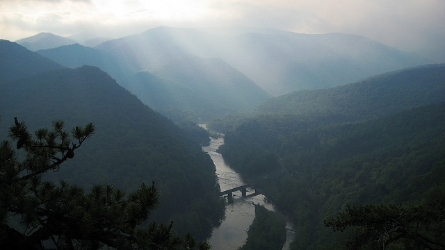 96 best images about greeneville and east tennessee on for Nolichucky river fishing