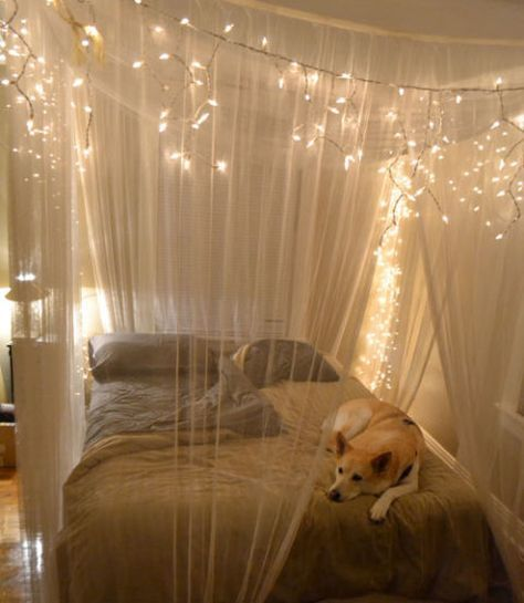 Create a magical cocoon around your bed with a gauzy and glittering canopy. Simply hang sheer drapery panels on wire rope threaded through eye hooks in the ceiling and accent with strings of cascading holiday lights.
