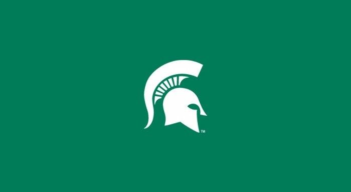 Michigan State MSU Spartans NCAA 8ft Poker/Billiard/Pool Table Cloth/Felt