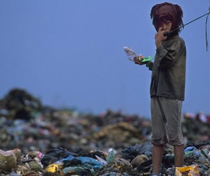 La poética del desperdicio: El cine y la basura