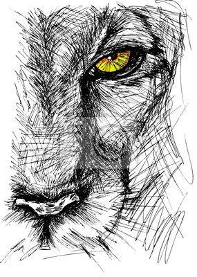 Sticker Hand getrokken schets van een leeuw kijken aandachtig naar de camera