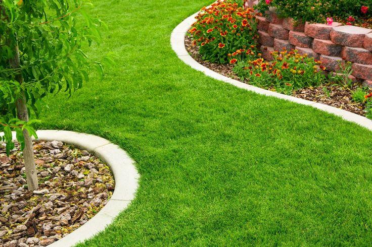 Pas de beau gazon sans les bonnes méthodes! Tonte, arrosage, scarification, mousse et mauvaises herbes, on vous livre tous nos conseils pour entretenir une pelouse.