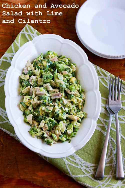 Chicken and Avocado Salad with Lime  --  I would not use Mayo as directed -- the mush some of the avocado for that -  I hate cilantro - so I sub for that also :D