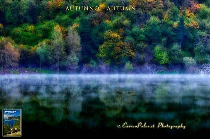 AUTUNNO Alba sul lago - AUTUMN Lake dawn
