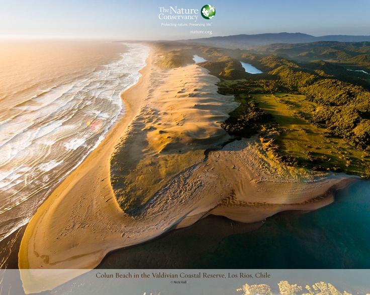 Colun Beach in the Valdivian Coast Reserve, Los Rios, Chile