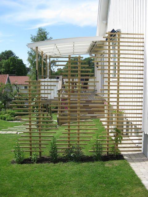 Hallontrollets trädgård: augusti 2013