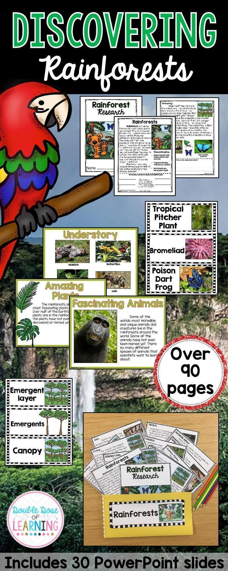 Easily and thoroughly teach the Biomes with this Rainforest Research Unit with ready to go materials and PowerPoint! This unit is interactive and utilizes multimodal strategies to increase student engagement and outcomes. The Rainforest unit is a comprehensive week long unit that integrates technology, vocabulary, writing, art, reading strategies and more! Students will respond to informational text by answering questions in a student booklet in a variety of formats.