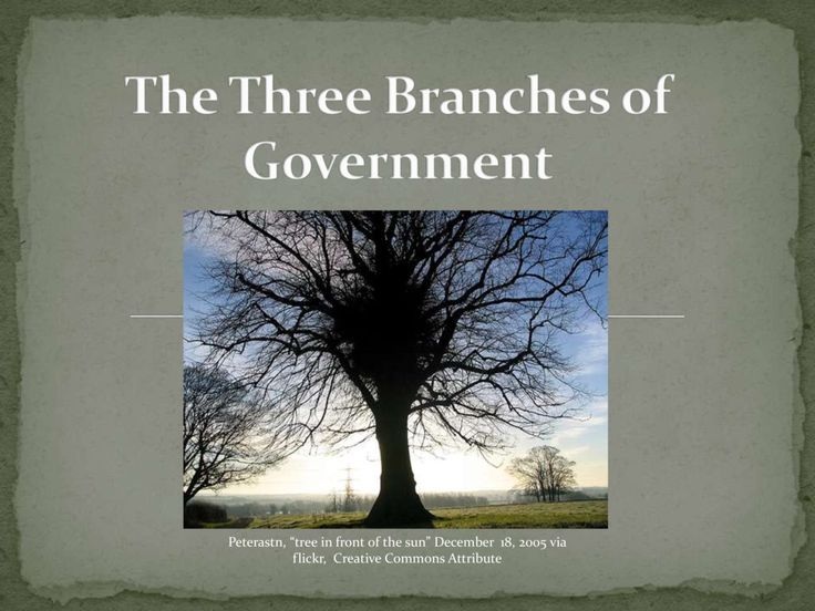The Three Branches Of Government Power Point by Solom1ej via slideshare