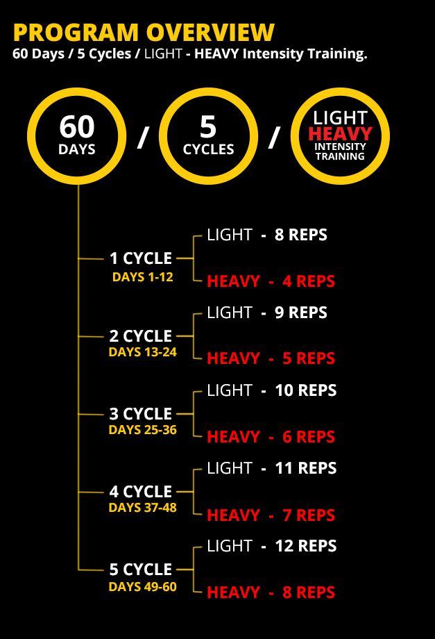 347 Best Workout Stuff Images On Circuit Workouts