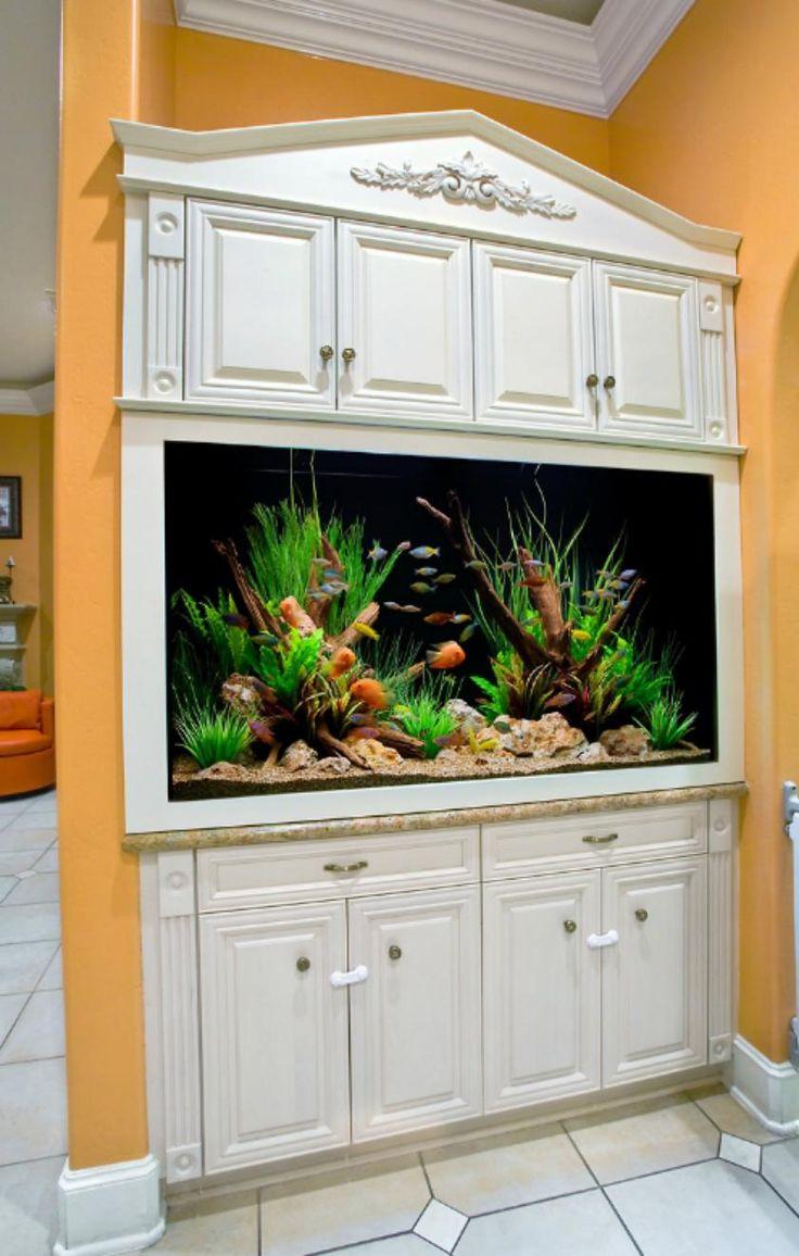 best fish aquariums images on pinterest