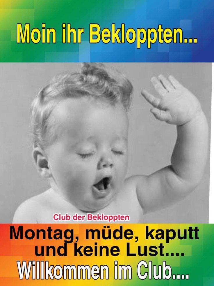 Moin, Montag