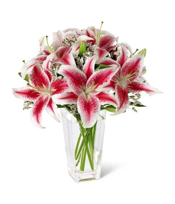 15 best Mother's Day Gift Ideas images on Pinterest   Floral ...