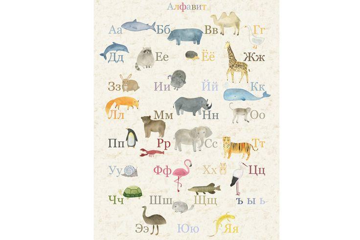 Размер постера: 43 x 59,5 см. (А2) Материал: матовая бумага средней плотности. Алфавит с животными для детишек станет стильным и полезным дополнение в комнате вашего ребёнка. Все нарисованные животные имеют естественную природную раскраску. Натуральные цвета воспринимаются ребёнком легче и гармоничней.