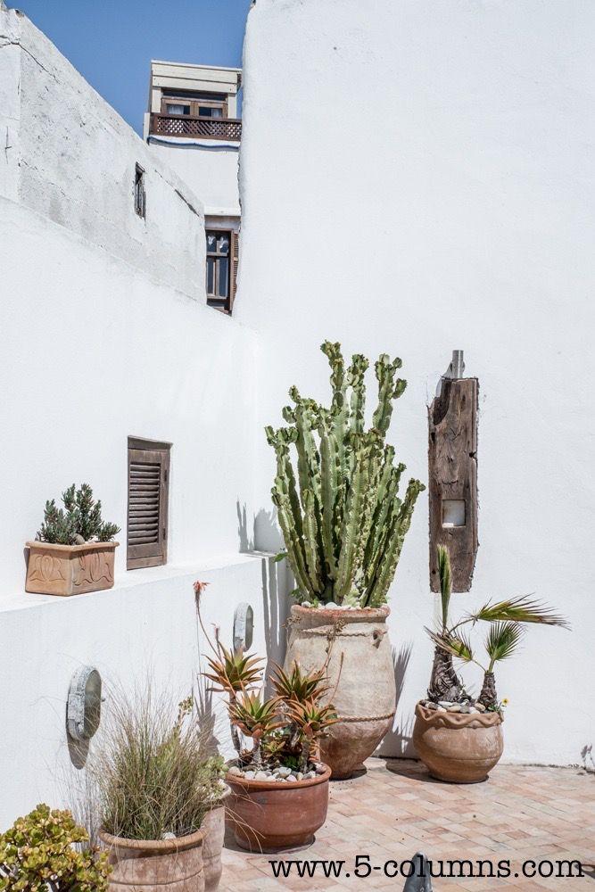 Terrace 2nd floor - Garden