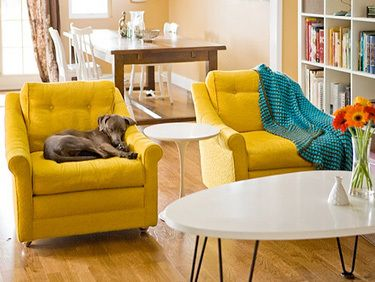 Best 25+ Yellow chairs ideas on Pinterest | Yellow armchair ...