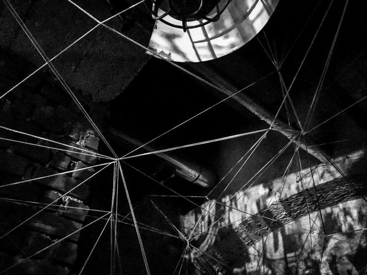 In a net somewhere in the catacombs of @registratur  #writer #mpfund #monoart_ #munich #münchen  #münchenliebe  #bw #bnw  #igersbnw #bw_lovers #bwoftheday  #writersonig #architecture  #noiretblanc #ic_bw  #monoart  #travel  #lostandfound #onmyway  #mitgefangenmitgehangen  #enjoylife #bw_photography #streetography #discovermore #hiddenplaces #schwarzweiß