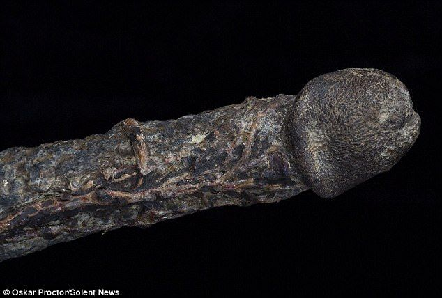 The rare artefact (pictured) belonged to an 18th Century Englishman whose penis happened to become rigid as he was hanged, the curator claims