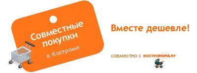 СП в Костроме