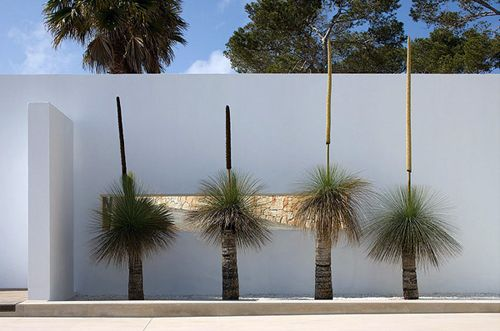 House Can BB_4 <3<3 LOVELY GRASS TREES