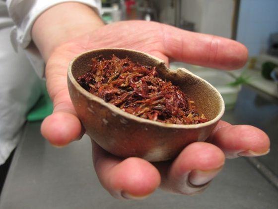 En Oaxaca, el chapulín es un alimento popular desde tiempos prehispánicos. / PABLO DE LLANO