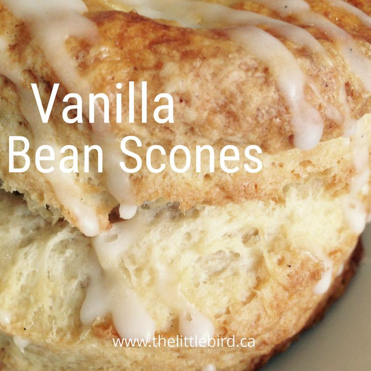 Join us this beautiful morning for a vanilla bean scone and a cup of tea at Little Bird!