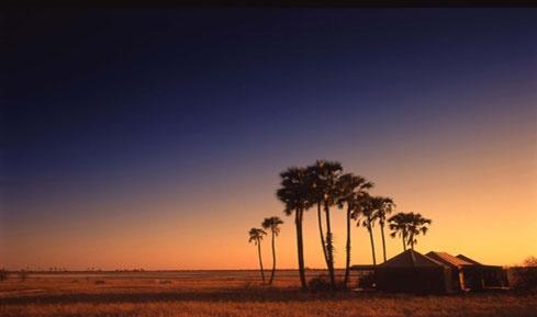Jack's Camp: Makgadikgadi Salt Pans, Botswana