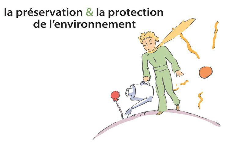 La préservation et la protection de l'environnement