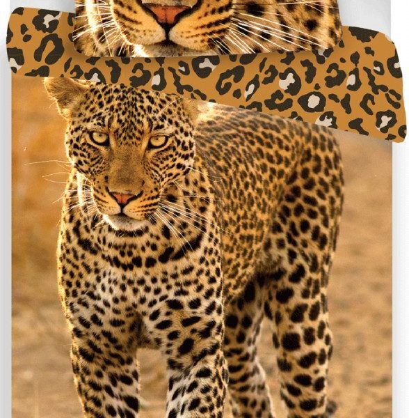 Leopard agynemuhuzat