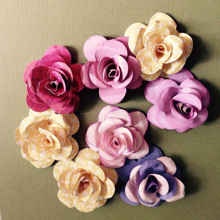 Paper Roses Andrea Bruce