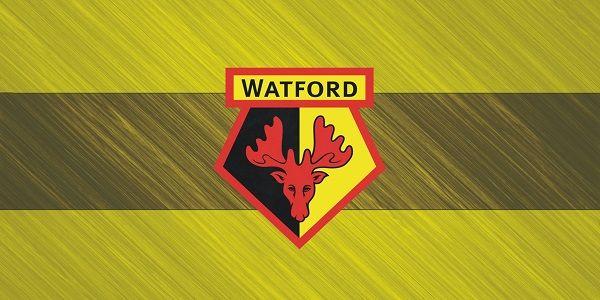 Watford Footbal Club merupakan klub professional yag berbasis di Watford, Hertfordshire, Inggris. Klub berjuluk The Hornets ini didirikan tahun 1881. Watford memainkan laga kandangnya di stadion Vicarage Road yang mampu menampung hingga kurang lebih 21.438 penonton. Watford dimiliki oleh putra seorang pengusaha ternama asal Italia, Gino Pozzo. Musim 2016/2017, Watford masih bermain di kompetisi kasta