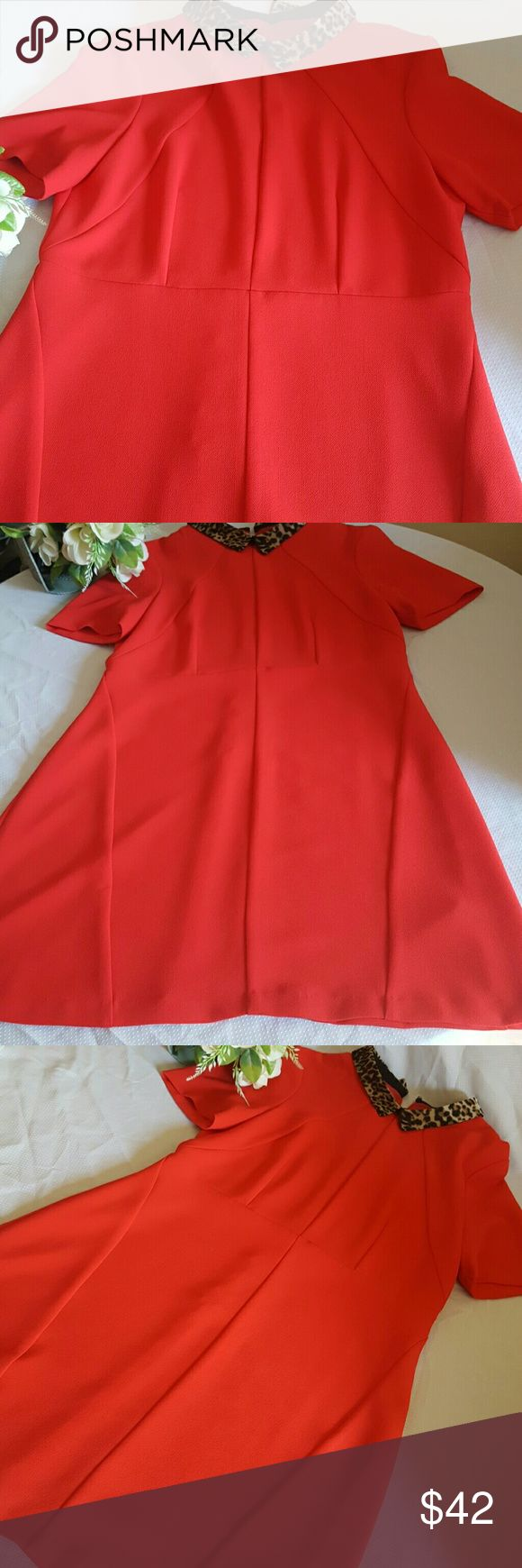 NEW WITH TAG OASIS DRESS SIZE 16/42 Perfect conditions  new wiht tag.rooms like a zise mediwn. Oasis  Dresses Midi