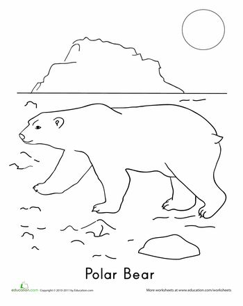 Free Free Printable Arctic Animals Coloring Pages, Download Free ... | 440x350