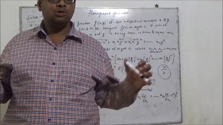#Homogeneous Functions # Euler Theorem # Proof # Basics