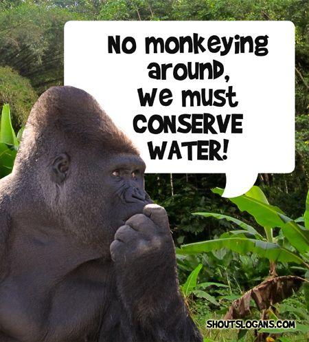 no monkeying around, we must save water!