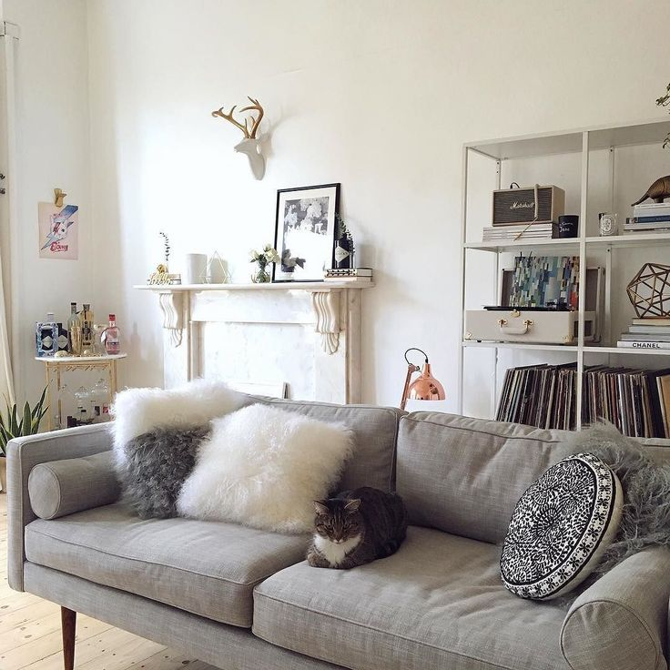This was my house yesterday our sexy new @westelmuk sofa arrived Mouse approved. Life was good. Today we have a squad of builders in to redo a couple of rooms... it's v messy so I think I'll just stick to looking at this picture